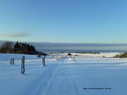Winterbilder aus Dänemark Insel Møn verschneiter Weg mit Ausblick auf Ostsee Pension Bakkegaard Møns Klint