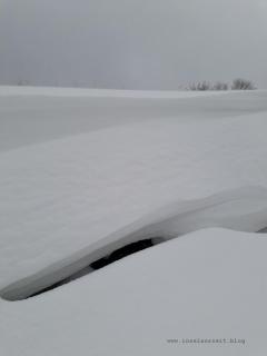 Winterbilder aus Dänemark Schneeverwehung